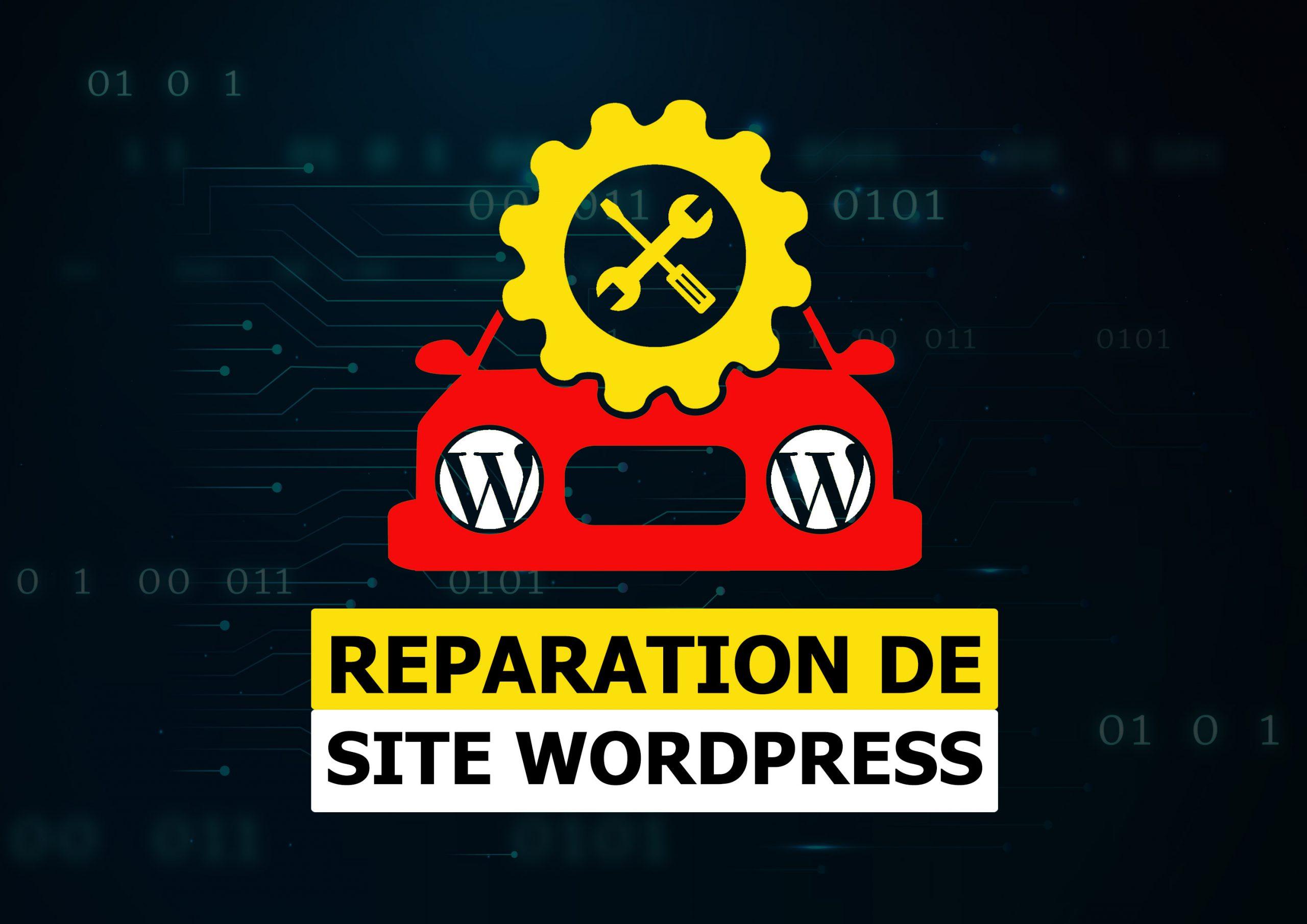 Je répare les bugs ou erreurs de votre site WordPress   plus de 8 ans d'expertise WordPress